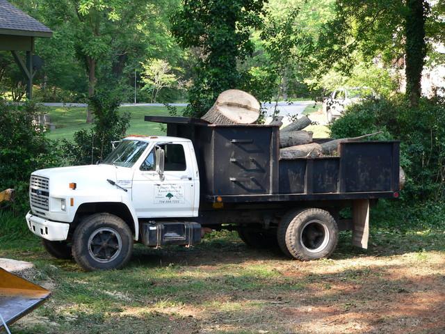 County Tree Service