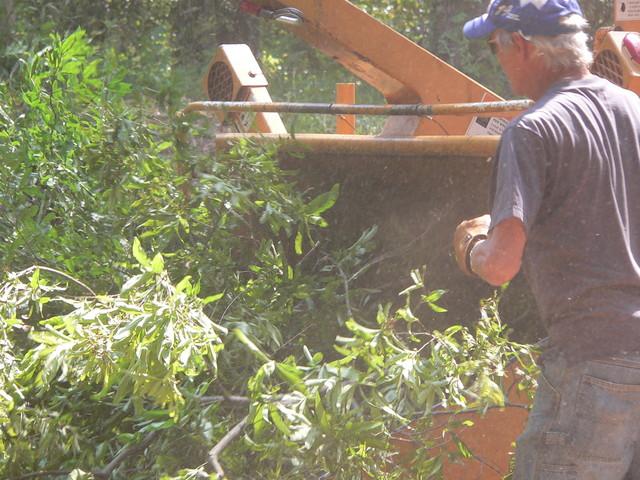 Tree Chipper Service
